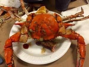 2016 Crab Feast3